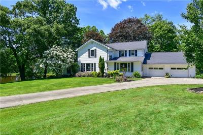 Canfield Single Family Home For Sale: 8384 Knauf Road