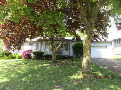 Mahoning County Single Family Home For Sale: 40 Circleview Drive