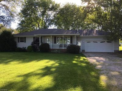 Lorain County Single Family Home For Sale: 10736 Quarry Road