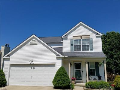 Medina County Single Family Home For Sale: 945 Chadwick Lane