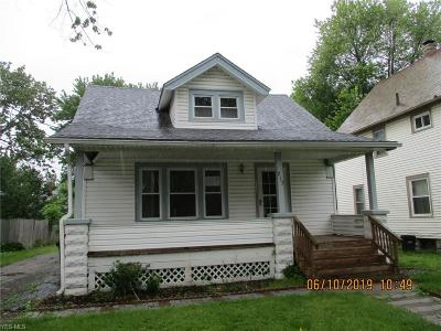 Lorain County Single Family Home For Sale: 213 Erie Street