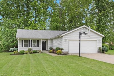 Madison Single Family Home For Sale: 7669 Lake Road