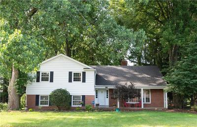 Fairview Park Single Family Home For Sale: 18829 Timber Lane
