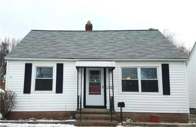 Cleveland Single Family Home For Sale: 12004 Mortimer Avenue