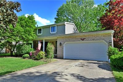 Youngstown Single Family Home For Sale: 4553 Sheffield Drive