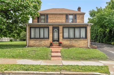 Hudson Single Family Home For Sale: 33 S Oviatt Street