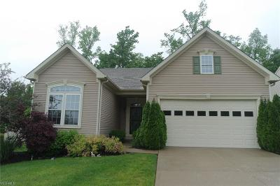 Twinsburg Single Family Home Active Under Contract: 9509 Angela Drive