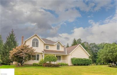 Solon Single Family Home For Sale: 33610 Outley Park Drive