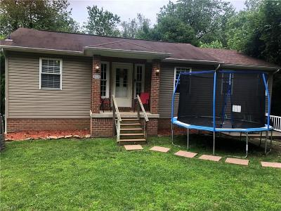 East Liverpool Single Family Home For Sale: 542 Henry Avenue