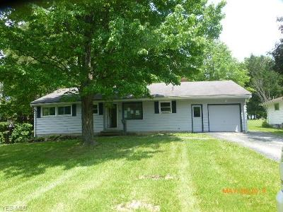 Youngstown Single Family Home For Sale: 75 Evans Avenue