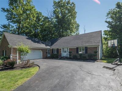 Canfield Single Family Home For Sale: 685 Blueberry Hill Drive