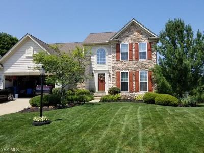 Berea Single Family Home Active Under Contract: 119 Cobblestone Court