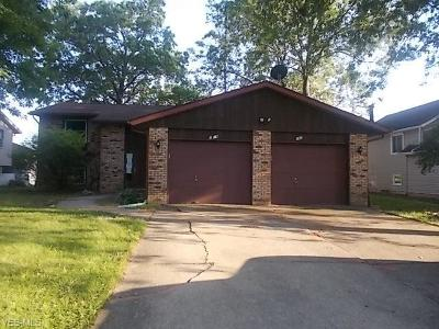 Lorain County Multi Family Home For Sale: 1409 Lindenwood Drive