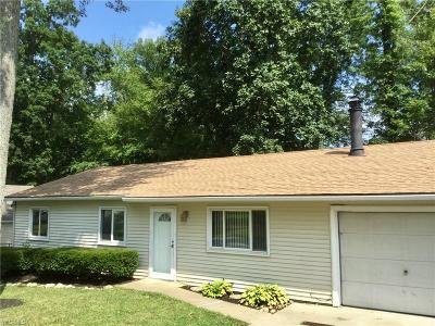 Chippewa Lake Single Family Home For Sale: 36 Lorrie Lane