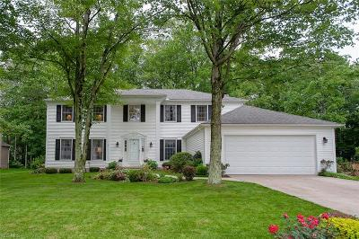 Strongsville Single Family Home For Sale: 19306 Misty Lake Drive