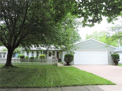 Elyria OH Single Family Home For Sale: $125,000