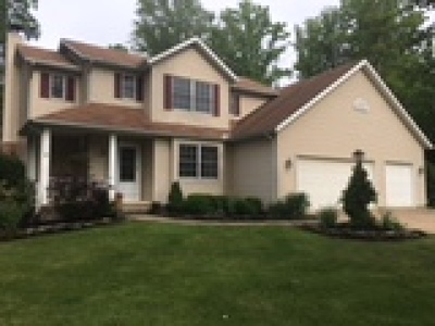 Painesville OH Single Family Home For Sale: $289,900