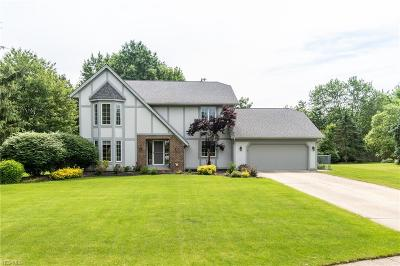 Solon Single Family Home For Sale: 6283 Morning Glory Circle