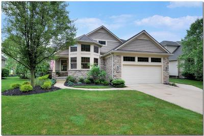 Avon Single Family Home For Sale: 33541 Reserve Way At St Andrews