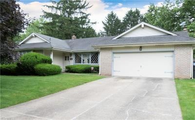 Youngstown Single Family Home For Sale: 51 S Shore Drive