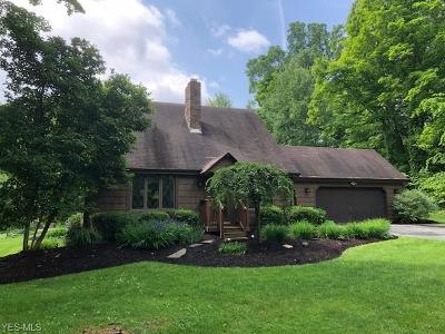 East Palestine Single Family Home Active Under Contract: 49421 England Drive