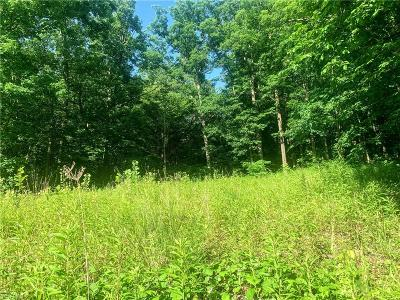 Hinckley Residential Lots & Land For Sale: 547 River Road