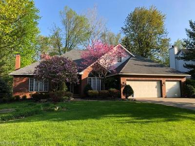 Mentor Single Family Home For Sale: 9250 Terrace Park Drive
