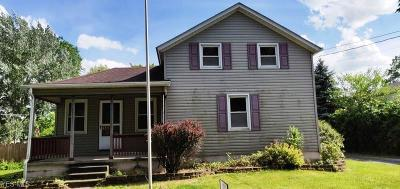 Lorain County Single Family Home For Sale: 411 W Herrick Avenue
