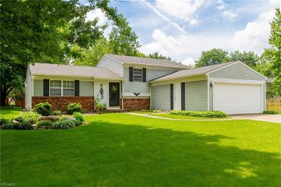Olmsted Township Single Family Home Active Under Contract: 8839 Yellowstone Parkway