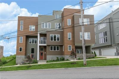 Cleveland Condo/Townhouse For Sale: 1313 W 54th Street