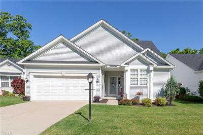 North Royalton Single Family Home For Sale: 18286 River Valley Boulevard