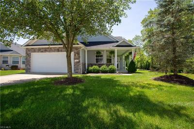 North Royalton Single Family Home For Sale: 10243 Crystal Springs Drive