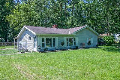 North Ridgeville Single Family Home For Sale: 4950 Main Avenue