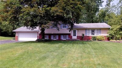 Mentor Single Family Home Active Under Contract: 7900 Pleasantview Trail