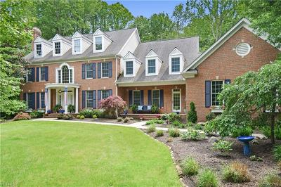 Chagrin Falls Single Family Home For Sale: 17180 Hidden Point Drive