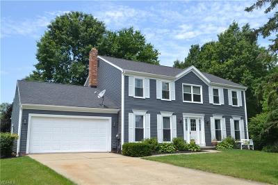 Solon Single Family Home For Sale: 34011 Summerset