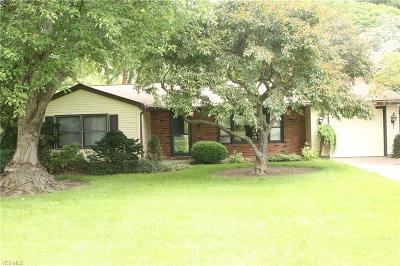 Madison Single Family Home For Sale: 4255 Dayton Road
