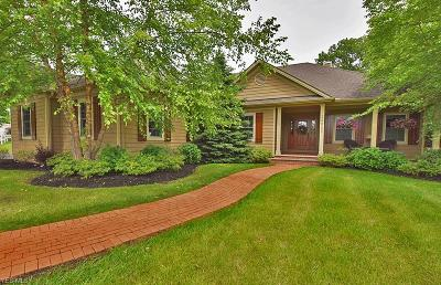 Willoughby Hills Single Family Home For Sale: 29820 Chardon Road