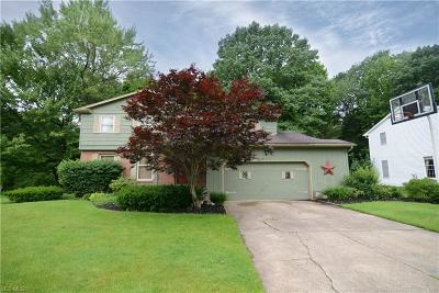 Youngstown Single Family Home For Sale: 569 Oakridge Drive