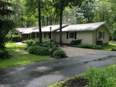 Chagrin Falls Single Family Home For Sale: 49 Daisy Lane