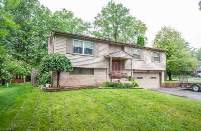 Mineral Ridge Single Family Home Active Under Contract: 1738 Dumont Drive