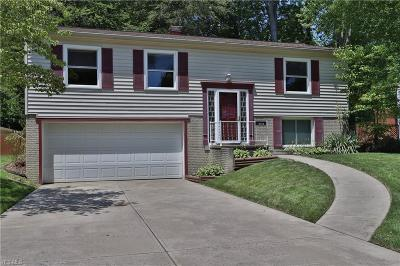 Olmsted Falls Single Family Home For Sale: 9356 Driftwood Drive