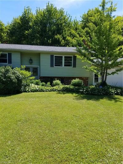 Geneva Single Family Home Active Under Contract: 3870 N County Line Road