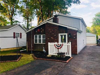 Avon Lake Single Family Home For Sale: 247 Fay Avenue