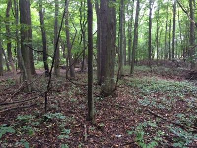 Strongsville Residential Lots & Land For Sale: Fair Road
