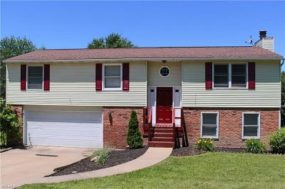 Mentor Single Family Home For Sale: 9595 Hoose Road