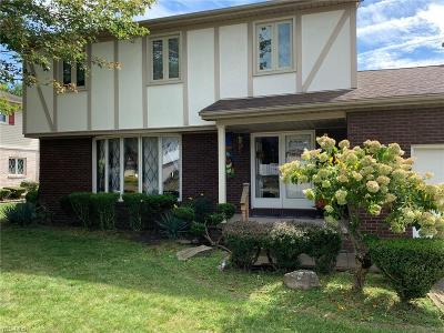 Youngstown Single Family Home For Sale: 3057 Shalisma Drive