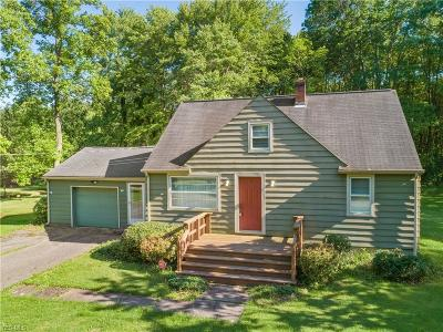 Newton Falls Single Family Home For Sale: 5195 Niles Avenue