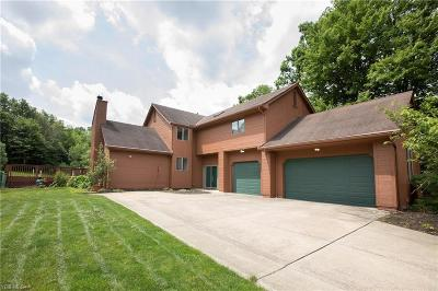 Brecksville Single Family Home For Sale: 9476 Greystone Parkway