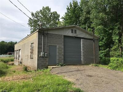 Ashtabula County Commercial For Sale: 2907 N Bend Road